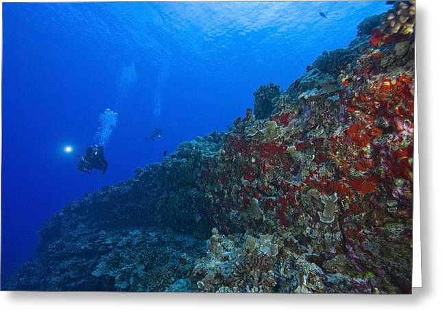30-35 Years Greeting Cards - Molokini Maui Hawaii Usa Scuba Diver Greeting Card by Stuart Westmorland