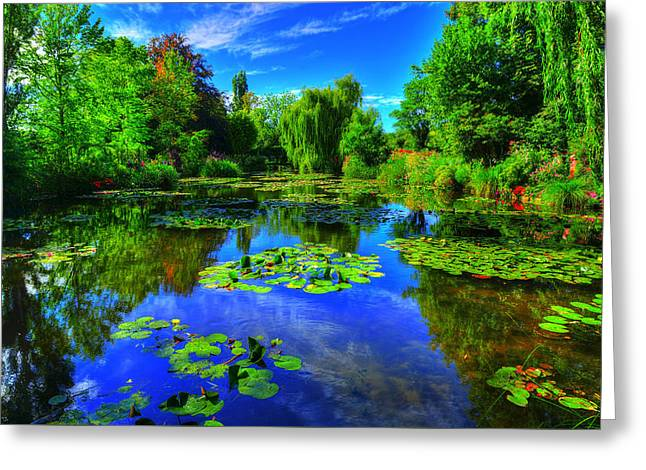 Monet's Lily Pond Greeting Card by Midori Chan