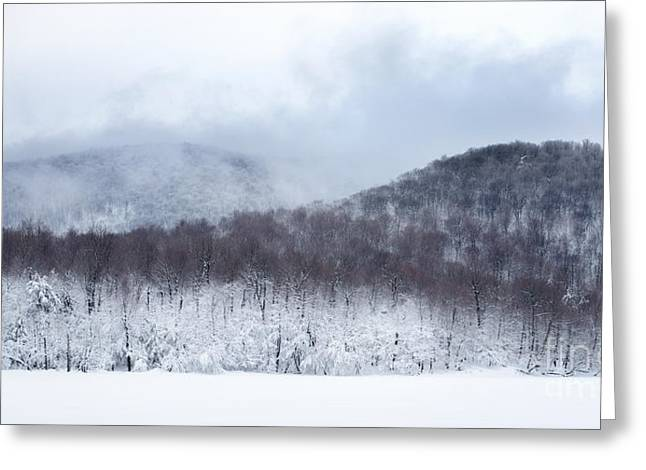 Bare Trees Greeting Cards - Mont Saint Hilaire Lac Hertel On a Winter Day Greeting Card by Laurent Lucuix