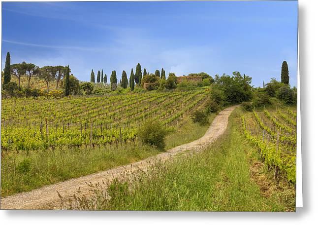 Italian Wine Greeting Cards - Montalcino Greeting Card by Joana Kruse