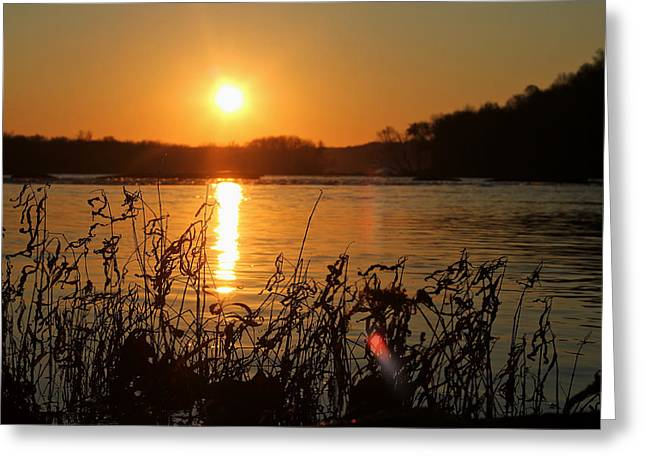 Seren Greeting Cards - Morning Calm  Greeting Card by Everett Houser