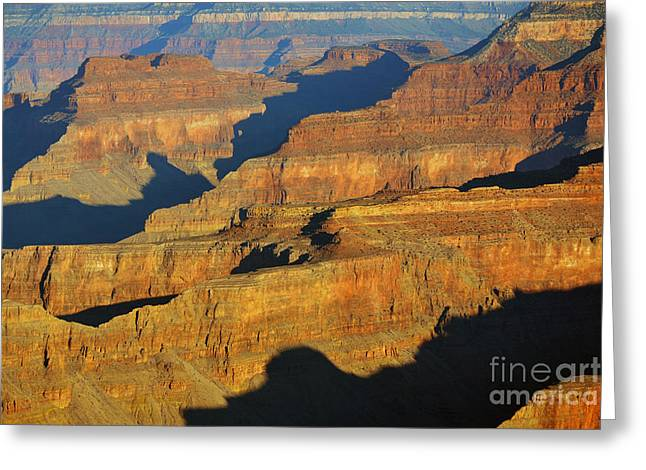 Morning Color And Shadow Play In Grand Canyon National Park Greeting Card by Shawn O'Brien