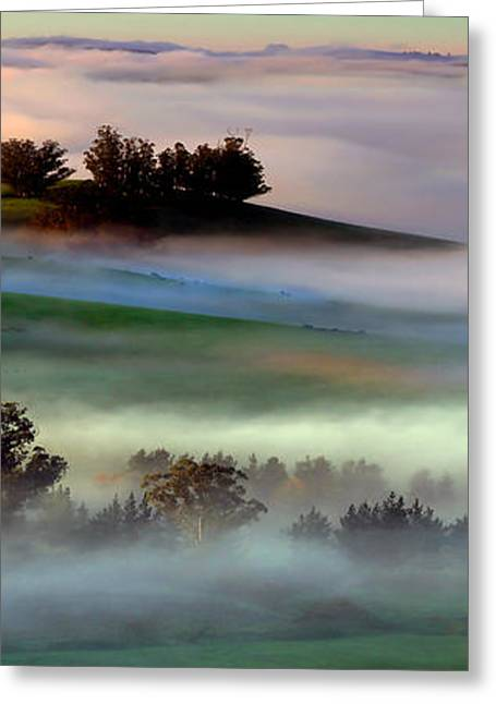 Bucolic Scenes Digital Art Greeting Cards - Morning Fog over Two Rock Valley Diptych Greeting Card by Wernher Krutein
