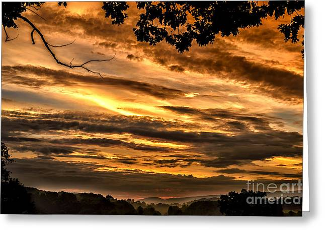 Nature Scene Digital Art Greeting Cards - Morning Light  Greeting Card by Thomas R Fletcher