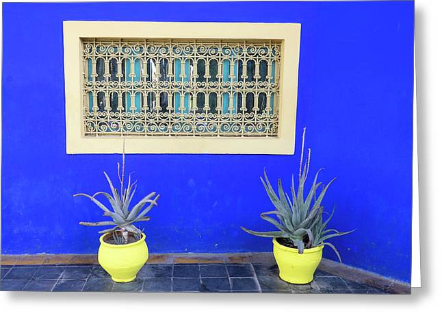 Morocco, Marrakech, Jacques Majorelle Greeting Card by Emily Wilson