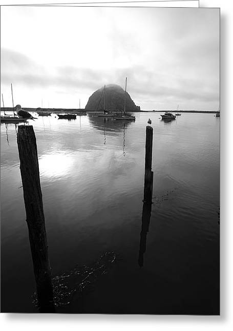 Nine Sisters Greeting Cards - Morro Bay Greeting Card by Viktor Savchenko