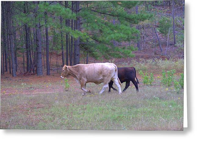 Cynthia Parker Greeting Cards - Mother and Child Greeting Card by Darrell Clakley