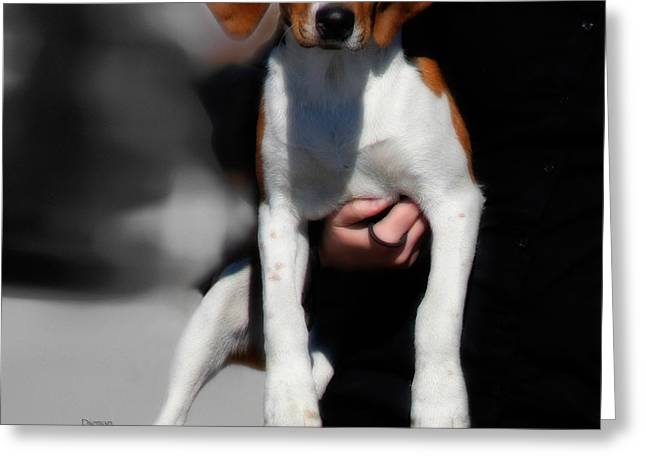 Puppy Digital Greeting Cards - Mother and Child  Greeting Card by Steven  Digman