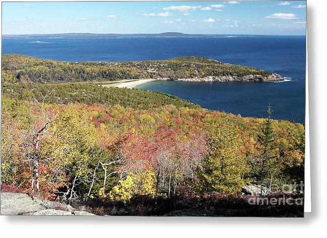 Maine Shore Greeting Cards - Mount Desert Island Greeting Card by Gregory G. Dimijian