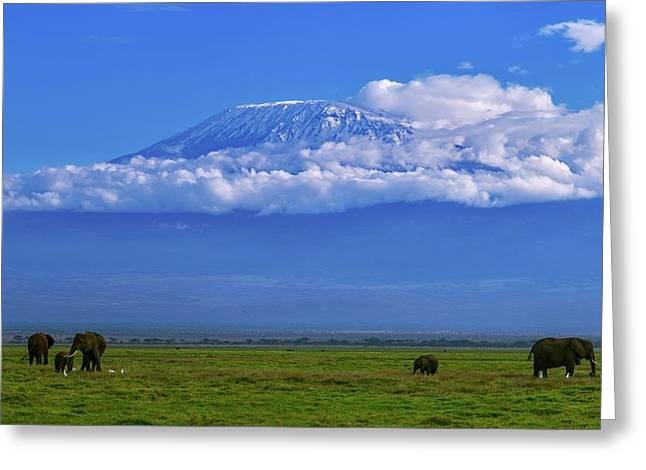 Mount Kilimanjaro Greeting Card by Babak Tafreshi
