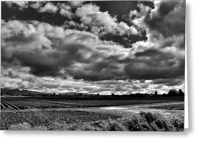 Puddle Greeting Cards - Mount Vernon Farmland - Washington State Greeting Card by David Patterson