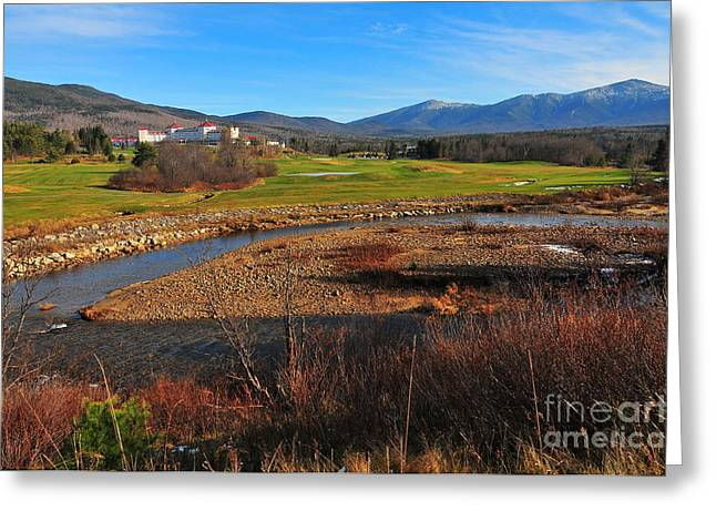 Foliage In White Mountains Greeting Cards - Mount Washington Greeting Card by Catherine Reusch  Daley