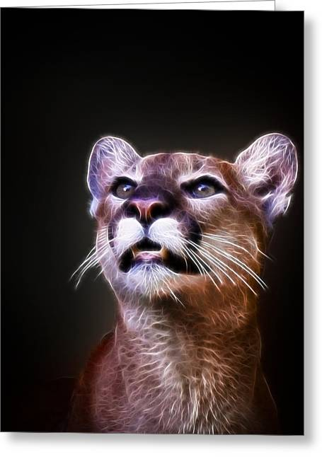 Growling Greeting Cards - Mountain Lion  Greeting Card by Steve McKinzie