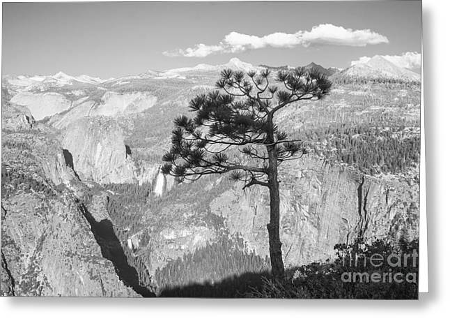 Shower Curtain Greeting Cards - Mountain Scenery Yosemite Np No22 Greeting Card by  ILONA ANITA TIGGES - GOETZE  ART and Photography
