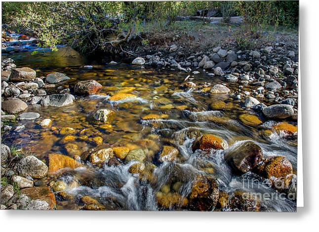 Picturesqueness Greeting Cards - Mountain Stream Greeting Card by Robert Bales