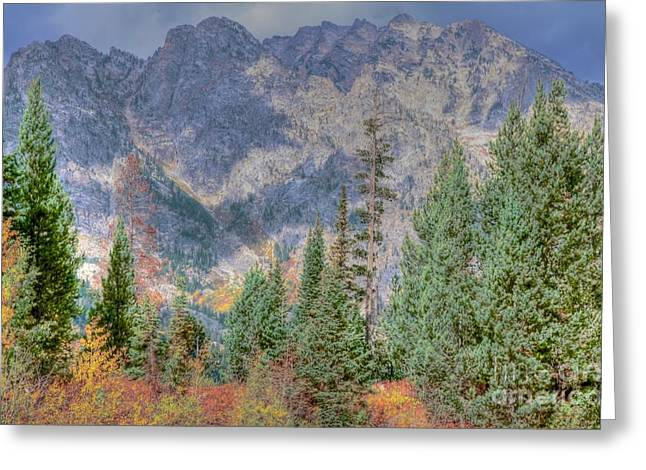 Struckle Greeting Cards - Mountains And Trees Greeting Card by Kathleen Struckle