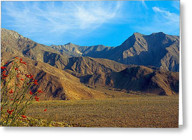 Park Scene Greeting Cards - Mountains In Anza Borrego Desert State Greeting Card by Panoramic Images