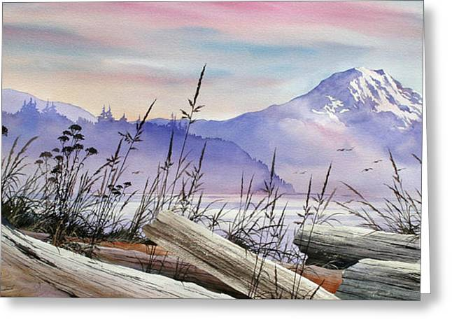 Landscape Framed Prints Greeting Cards - Mt. Rainier Driftwood Shore Greeting Card by James Williamson
