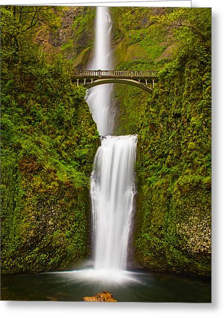 Recently Sold -  - Moss Greeting Cards - Multnomah Falls Greeting Card by Patricia  Davidson