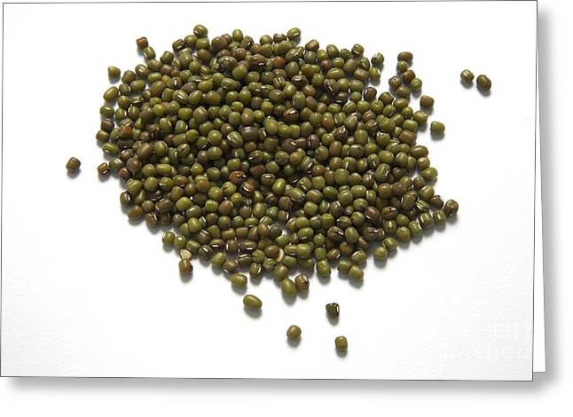 Green Beans Greeting Cards - Mung Beans Greeting Card by Victor de Schwanberg