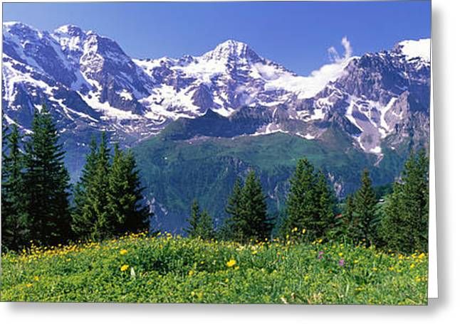 Snow Capped Greeting Cards - Murren Switzerland Greeting Card by Panoramic Images