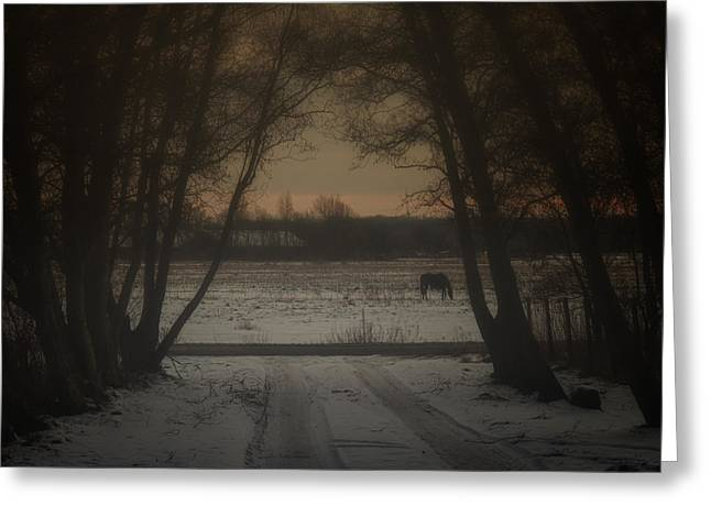Evil Photographs Greeting Cards - My Dark Forest Greeting Card by Stylianos Kleanthous