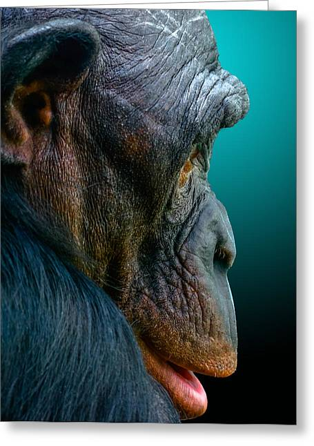 Humanlike Greeting Cards - My good side Greeting Card by Brian Stevens