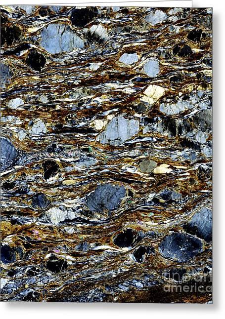 Metamorphism Greeting Cards - Mylonite Mineral, Light Micrograph Greeting Card by Dirk Wiersma