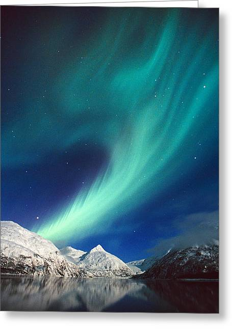 N. Lights Over Portage Lake & Chugach Greeting Card by Daryl Pederson
