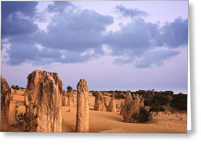 Western Australia Greeting Cards - Nambung National Park Greeting Card by Colin and Linda McKie