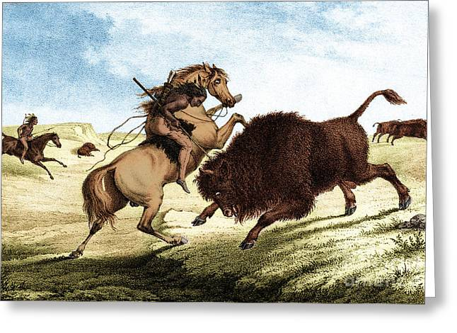 Indigenous Americans Greeting Cards - Native American Indian Buffalo Hunting Greeting Card by Photo Researchers