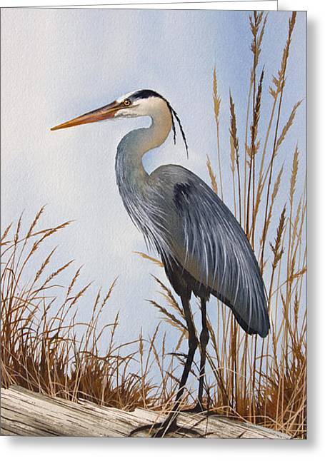 Great Paintings Greeting Cards - Natures Gentle Beauty Greeting Card by James Williamson
