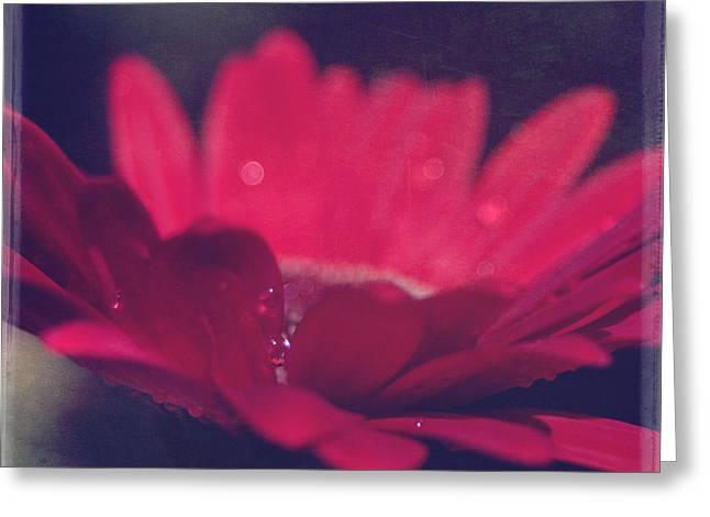 Textured Floral Greeting Cards - Natures Song Greeting Card by Sharon Mau
