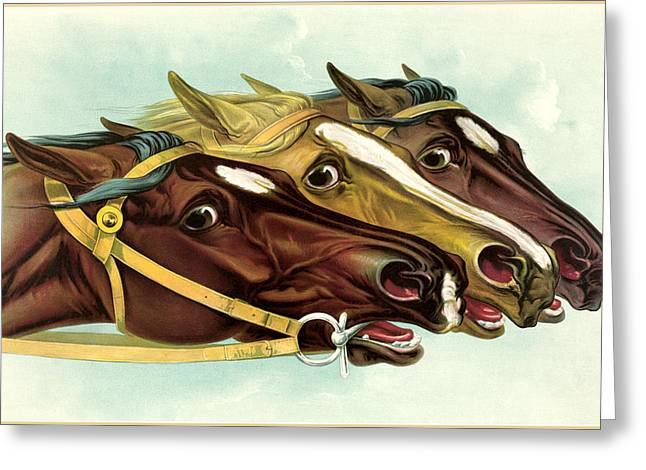 Antique Digital Greeting Cards - Neck and Neck Greeting Card by Gary Grayson