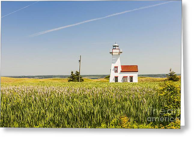 Canadian Greeting Cards - New London Range Rear Lighthouse Greeting Card by Elena Elisseeva