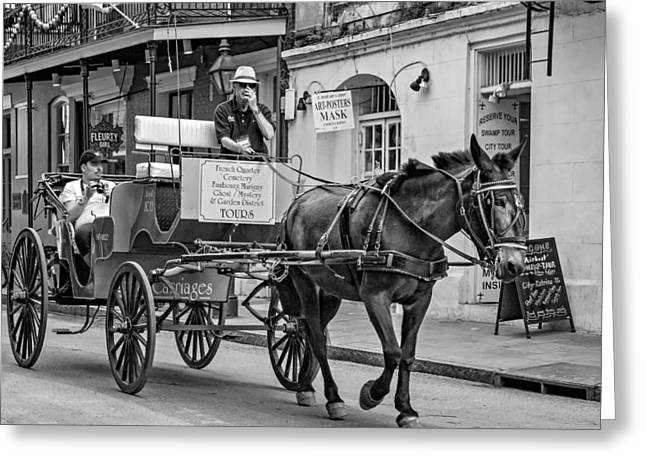 French Door Greeting Cards - New Orleans - Carriage Ride BW Greeting Card by Steve Harrington