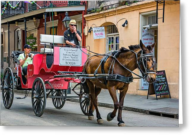 French Doors Greeting Cards - New Orleans - Carriage Ride Greeting Card by Steve Harrington