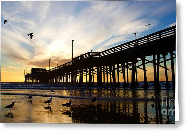 Elite Image Photography By Chad Mcdermott Greeting Cards - Newport Beach California Pier at Sunset in the Golden Silhouette Greeting Card by ELITE IMAGE photography By Chad McDermott