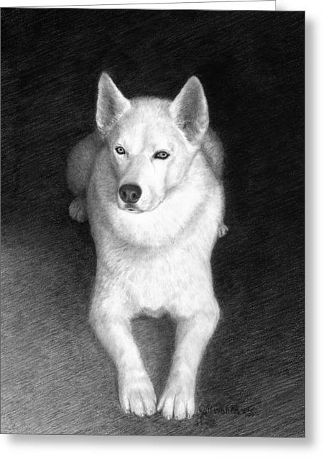Full Body Drawings Greeting Cards - Nykia Greeting Card by Joe Olivares