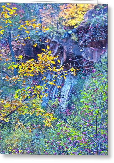 West Fork Greeting Cards - Oak Leaves by the Canyon Wall Greeting Card by Brian Lambert