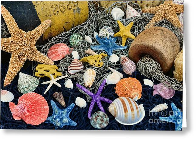 Glass Buoys Greeting Cards - Ocean Treasures Greeting Card by Paul Ward