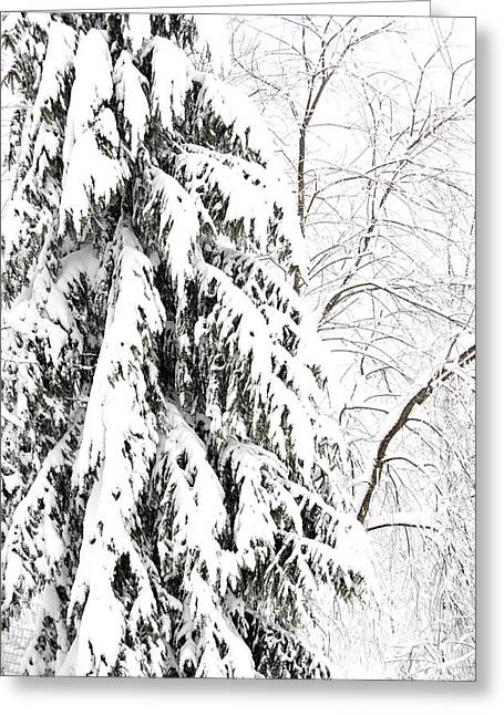 Hurricane Sandy Photographs Greeting Cards - October Snow  Greeting Card by Thomas R Fletcher