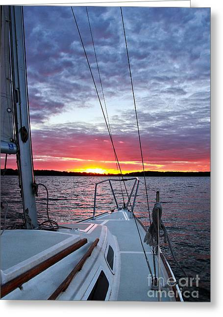 Jill Hyland Greeting Cards - Off Into the Sunset Greeting Card by Jill Hyland