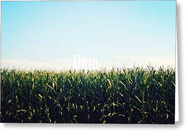 Barn Digital Art Greeting Cards - Ode to Ohio Greeting Card by Natasha Marco