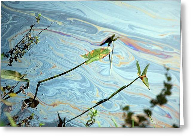 Oil Spill Greeting Card by Jim West