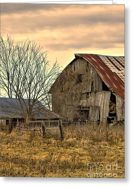 Barn Yard Greeting Cards - Old Barn and Shed Cloudy Winter Day #1 Greeting Card by Rick Grisolano Photography LLC
