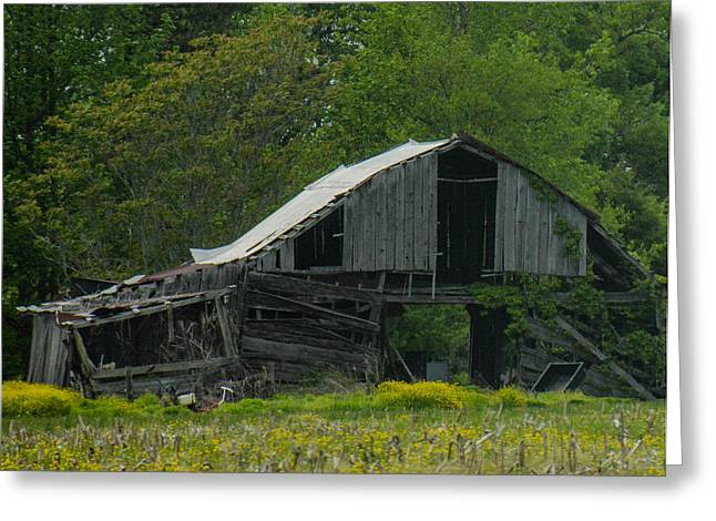 Natchez Trace Parkway Greeting Cards - Old Barn Greeting Card by Pamela Schreckengost
