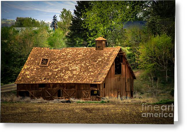 Haybales Greeting Cards - Old Barn Greeting Card by Robert Bales