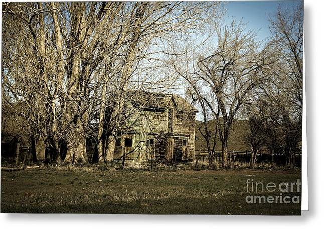 Old Farm House Greeting Card by Robert Bales