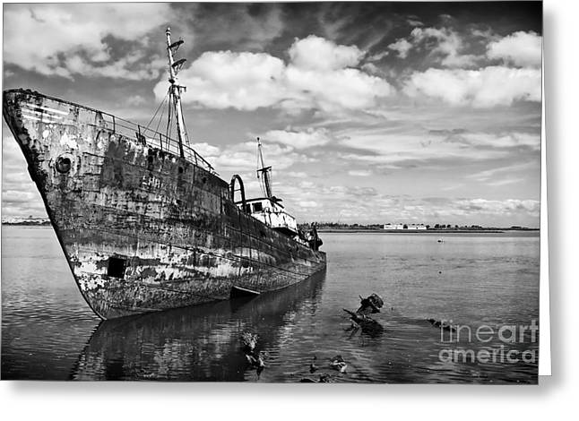 Water Scrapping Greeting Cards - Old fishing ship wreck Greeting Card by Jose Elias - Sofia Pereira